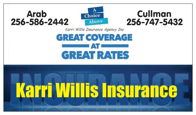 karri willis insurance